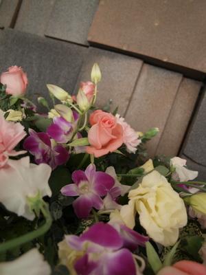 20110109_flower
