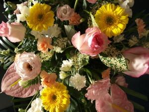 20110403flower